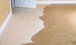 Water Damage: Recovering From Storms