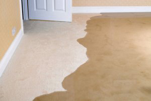 How To Keep Your Basement Water Free